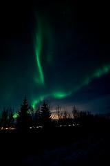 Iceland_2015-276 (agoldmutt) Tags: iceland reykjavik geyser ingvellir northernlights goldencircle gullfosswaterfall