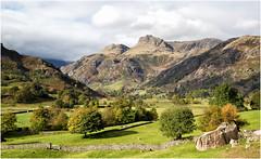 looking toward Great Langdale (Antony Ward) Tags: cumbria