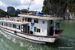 D72_7092 (Tom Ballard Photography) Tags: flowers boats vietnam fishingboats halongbay tourboats conehat novotelhotel bayclub breakfastbuffet dongthiencungcave 20151118