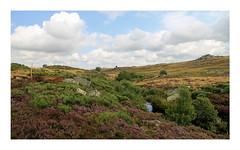 Aubrac (Yvan LEMEUR) Tags: france landscape solitude nuages paysage extrieur randonne aveyron aubrac midipyrnes lozre immensit