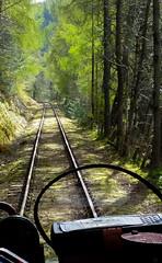 train ride on the Keith & Dufftown Railway (loonatic) Tags: trees green train scotland woods tracks railway keith foilage dufftown