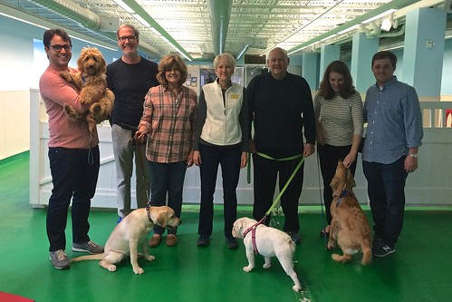 "Puppy Head Start, Session P Class photo-01 • <a style=""font-size:0.8em;"" href=""http://www.flickr.com/photos/65918608@N08/23897537305/"" target=""_blank"">View on Flickr</a>"