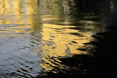 motala strm III (gunnar.berenmark) Tags: norrkping sweden sverige water surface mirror spegling vatten yta motalastrm