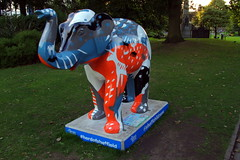 22.9.16 Elephants in Sheffield 127 (donald judge) Tags: sheffield herd of elephants chldrens hospital charity