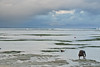 No title (frata60) Tags: nikon j1 sanur bali indonesia indonesië beach strand 1030mm vr people mensen landscape landschap seascape sky luchten