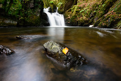 Mullinhassig Waterfall and Woods (redape99_) Tags: autumn blur forest ireland landscape longexposure water waterfall woods