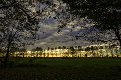 (robbar74) Tags: milano periferia tramonto sunset hinterland cielo nuvole sky clouds natura nature silhouette