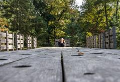 table etiquette (markhortonphotography) Tags: kew trees surrey aliceinwonderland markhortonphotography long gardens royalbotanicgardens table picnic teaparty kewgardens thatmacroguy