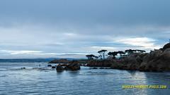 093 Monterey LR (bradleybennett) Tags: water river ocean stream creek beach shore shoreline line coast tide
