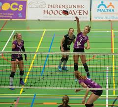 1B260864 (roel.ubels) Tags: vv utrecht eurosped galgewaard volleybal volleyball 18 finale nationale beker