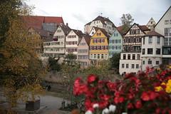 IMG_3322 (downatthezoo) Tags: badenwuerttemberg tuebingen deutschland