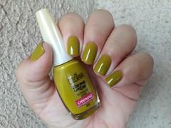 Retngulo Verde - Colorama (Claudia _Freitas) Tags: retnguloverde colorama