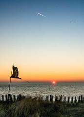 voyage (m@t.) Tags: matin ileder sunrise france sun sea mer soleil avion plane landscape fence hff littoral