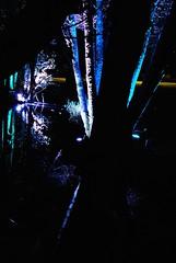 Lights in Alingss 5 (Bettysbilder) Tags: night lightsetting ljussttning ljusdesign kvllsfoto lights nightphotos