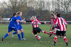 Altrincham LFC vs Stockport County LFC - December 2016-166 (MichaelRipleyPhotography) Tags: altrincham altrinchamfc altrinchamlfc altrinchamladies alty amateur ball community fans football footy header kick ladies ladiesfootball league merseyvalley nwrl nwrldivsion1south nonleague pass pitch referee robins shoot shot soccer stockportcountylfc stockportcountyladies supporters tackle team womensfootball