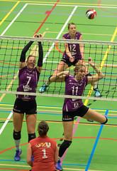 1B260956 (roel.ubels) Tags: vv utrecht eurosped galgewaard volleybal volleyball 18 finale nationale beker