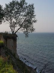 Brodtener Steilufer (3) (Teelicht) Tags: balticsea brodten brodtenerufer deutschland germany kste lbeck meer ostsee schleswigholstein travemnde coast sea luebeck travemuende steilufer steepcoast