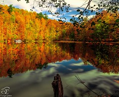 Love of Colors (BeNowMeHere) Tags: ifttt 500px trip bolu colour fall fallcolours landscape love loveofcolors turkey yedigller autumn color colorful colourful foliage travel
