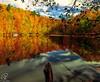 Love of Colors (BeNowMeHere) Tags: ifttt 500px trip bolu colour fall fallcolours landscape love loveofcolors turkey yedigöller autumn color colorful colourful foliage travel