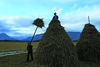 Heuhaufen im Murnauer Moos (murnau_am_staffelsee) Tags: riegsee blauesland landkreisgarmischpartenkirchen landwirtschaft herbst murnauamstaffelsee bayern ger murnauermoos
