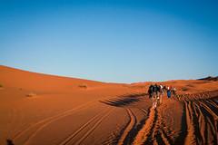 IMG_6198 (Israel Filipe) Tags: marrocos