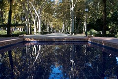 Parque de Maria Luisa (2) ({House} Photography) Tags: spain seville sevilla andalusia europe travel photography canon 70d 24105 f4 housephotography timothyhouse parque de maria luisa park garden water wet reflection trees