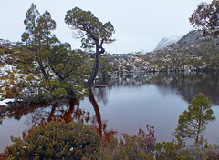 Peaceful rest (LeelooDallas) Tags: australia tasmania cradle mountain landscape dana iwachow fuji finepix hs20 exr dove lake water cloud sky tree forest