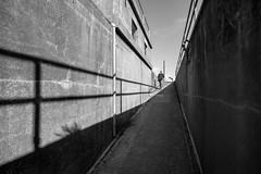 uncertainty, but not mine (Super G) Tags: nikon293 candid bw blackandwhite abandoned shadows railing ramp concrete
