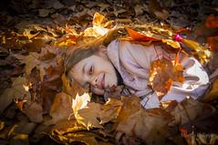 Salerne st barthelemy-1065 (philippemurtas) Tags: automne nature couleur feuille dore fille jeune jeu amusement joie sousbois rire bienetre emotion autumn color leaf golden girl young play fun joy underwood laugh wellbeing nikon