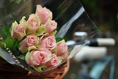 Reedesed roosid (anuwintschalek) Tags: nikond90 40mm micronikkor austria niedersterreich wienerneustadt sgis autumn home kodu aed garden garten november 2016 roosid roosa pink rosen bukett bouquet fairtrade roses ratas jalgratas pike puchbike puchcult puch fahrrad