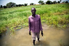 Fishing in the swamps (FAOemergencies) Tags: fao food agriculture crops cultivation cultivators farmers farming fish foodsecurity sorghum aweil northernbahralgazal southsudan emergencies africa fisheries sourthsudan conflict crisis fisherers