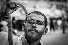 'Would you like to hold the snake?' he said.  'Err no' I said. (#Weybridge Photographer) Tags: africa slr canon square eos 350d northafrica snake morocco adobe marrakech marrakesh dslr charmer lightroom djemaelfna jamaaelfna jemaaelfnaa djemaaelfnaa jamaaelfnaa