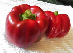 Red and sweet (MissyPenny) Tags: red food usa vegetables pennsylvania peppers edible commonwealthpa