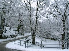nieve (alvaro31416) Tags: nevada castaos casillas nieva