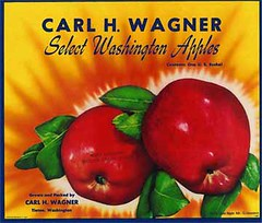 "Carl Wagner • <a style=""font-size:0.8em;"" href=""http://www.flickr.com/photos/136320455@N08/21480312371/"" target=""_blank"">View on Flickr</a>"