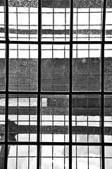 Linee rette (Marco Forgione) Tags: urbino marche