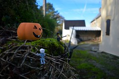 Ready for the night (304/365) (robjvale) Tags: holiday france halloween pumpkin skeleton outside outdoors nikon lego outdoor lookout watchout project365 d3200 adventurerjoe
