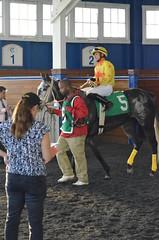 "2015-12-12 (27) r7 Javian Toledo on #5 Synergist (JLeeFleenor) Tags: photos photography md marylandracing marylandhorseracing laurelpark horseracing jockey جُوكِي ""赛马骑师"" jinete ""競馬騎手"" dżokej jocheu คนขี่ม้าแข่ง jóquei žokej kilparatsastaja rennreiter fantino ""경마 기수"" жокей jokey người horses thoroughbreds equine equestrian cheval cavalo cavallo cavall caballo pferd paard perd hevonen hest hestur cal kon konj beygir capall ceffyl cuddy yarraman faras alogo soos kuda uma pfeerd koin حصان кон 马 häst άλογο סוס घोड़ा 馬 koń лошадь grey gray maryland"