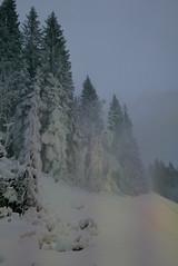 White christmas in Oslo (Odd Stiansen) Tags: snow oslo norway desember snø tryvann snowmaking skisenter vinterpark snøkanon