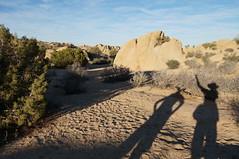 sleepy stone face (rovingmagpie) Tags: california joshuatreenationalpark joshuatree wwii kani desertforests df2016 rockface stoneface shadowselfie shadow