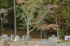 Colorful look in the cemetery (kudzu 70) Tags: ga marietta nikon nikond7200 art artistic cemetaries cemetary colors colorsblue georgia green headstones home landscape lighting mounuments pictures red