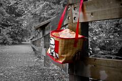 Lunch time? (L E Dye) Tags: britishcolumbia fencefriday rainforest kentuckyfriedchicken bc canada d5100 ledye nikon fence