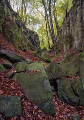 Vertical Panorama - Tilt&Shift - Nikon D800E & Rokinon 3,5/24mm TS (Ansgar Hillebrand) Tags: wald forest siebengebirge canyon landscape nature natur landschaft landscapes landscapephotography landschaften bltter bume herbst herbstlaub autumn tiltshift shifttilt rokinon nikon nikond800e nikond800 d800 d800e