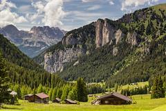 L'altro lato della Val S. Nicol (cesco.pb) Tags: valdifassa dolomiten dolomiti dolomites valsnicol trentino italia italy canon canoneos60d tamronsp1750mmf28xrdiiivcld catinaccio montagna mountains