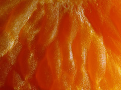 Satsuma (1selecta) Tags: food fruit citrus orange orangy yellow yellowish red reddish highlight highlights raised proud flush bump bumps bumpy bright light detail detailed undulate undelating undulated smooth rounded roundish texture organic
