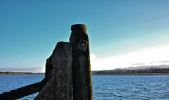 Old Jetty for ferry boats (Joan's Pics 2012) Tags: oldjetty anglesey ruin rusty 116picturesin2016 bolts explore menai