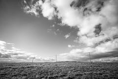 La mano del hombre (JavierLorca) Tags: luz tendidoelectrico postes electricidad nubes campo otoño aveyron france 21 distagon nikon d4 javier lorca