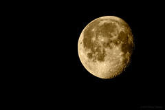 Tonight is the night when we travel into the heart of the unknown (OR_U) Tags: 2016 oru uk moon monochrome luna