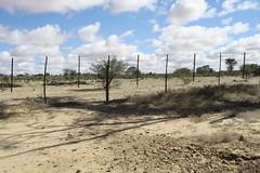 2015_Stampriet_Fieldwork-Kirstin_Fields1 (The International Groundwater Centre) Tags: groundwater governance africa southafrica botswana namibia ramotswa aquifer kirstin conti