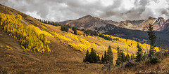 Boom (Will Cook Photography (WCreations46)) Tags: crestedbutte aspens colorado explore